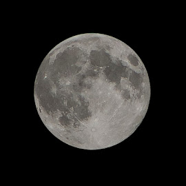 Supermoon August 10th 2014 by Warren Slater - News & Events World Events ( moon,  )