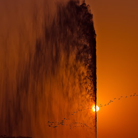 King Fahd's Fountain by Rolex Rebadomia - Landscapes Sunsets & Sunrises ( sunset, fountain,  )