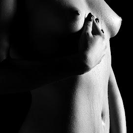Sensuality by István Decsi - Nudes & Boudoir Artistic Nude ( erotic, nude, low_key, woman, art, sensuality,  )