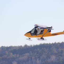 Ultralight by Paula Weston - Transportation Airplanes ( winter, plane, ultralight, airplane, yellow,  )