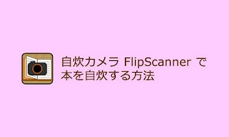 Screenshot of FlipScanner