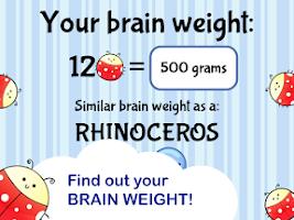 Screenshot of Brain Trainer with Ladybug