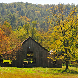Old Tennessee Barn by Elaine Brixhoff - Buildings & Architecture Other Exteriors ( farm, hills, mountains, fall, tennessee, weather )