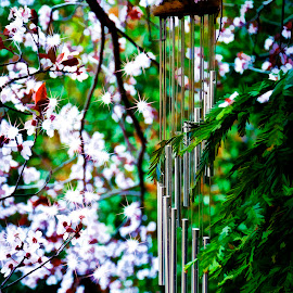 Windchimes by Howie George - Artistic Objects Musical Instruments ( windchimes, flowers, springtime )