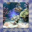 Coral Reef Live WP icon