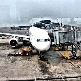 Ready to fly !!  by Shamsad Mhd - Transportation Airplanes ( hong kong, airport, plane, fly, airplane, packing, front, frontview, ready,  )