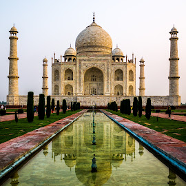 The Taj by Akhil Kabu - Buildings & Architecture Statues & Monuments ( love, taj, agra, india )