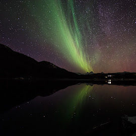 Aurora on Ice by Rune Nilssen - Landscapes Waterscapes ( k3, milkyway, fisheye, aurora, pentax, 10mm, landscape, lodingen, fjellsendvatnet, sky, sigma, boreali, stars, night, nordland, kaaringen )
