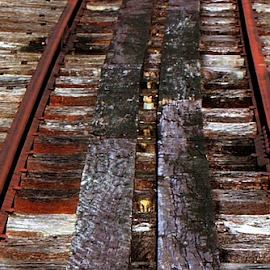 Decaying track by Peter Keast - Transportation Railway Tracks ( creek, track, rail, bridge, decay )