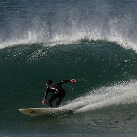 Perfect Wave by Ken Miller - Sports & Fitness Surfing ( water, surfing, water sports, waves, california, curl, ocean,  )