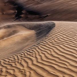 Curvy Ripples by Johan Jooste Snr - Nature Up Close Sand ( sand, dunes, namib desert, desert, namibia )