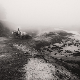 THE FOG by Chandan Hazra - Landscapes Weather ( foggy, winter, black and white, cart, landscape, b&w )