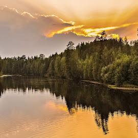 August night by Ewa Nilsson - Landscapes Sunsets & Sunrises ( water, sunset lapland, sweden, sky, wood, green, reflections, trees, yellow, light )