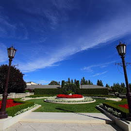 Beauty of Symmetry by Sanjib Paul - City,  Street & Park  City Parks ( clouds, blue sky, red flower, park, wineary, sonoma )