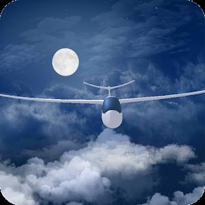 Flight in the night sky FREE