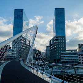 Bridge to the future by Ruxandra Ciubotaru - Buildings & Architecture Bridges & Suspended Structures ( modern, sunset, glass, buildings, architecture, bridge, steel, city )