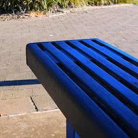 Blue Protruder by Leigh Martin - Artistic Objects Furniture ( bench blue edge )