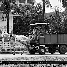 by Don Martin - Transportation Other ( cuban taxi )