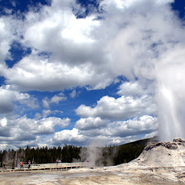 Natural Geyser at Work by Naveen Ds - Landscapes Caves & Formations ( nps, clouds, yellowstone, geyser, blue, natural geyser, wyoming, yellowstone national park, caves, scenary, landscape )
