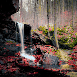 Emory Gap Falls by Trent Eades - Landscapes Forests ( red, creek, waterfall, forest, river )