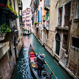 Beautiful Venice  by Travis Bester - City,  Street & Park  Street Scenes ( #venice #beauty #streetveiw #gondola #cityinthesea )