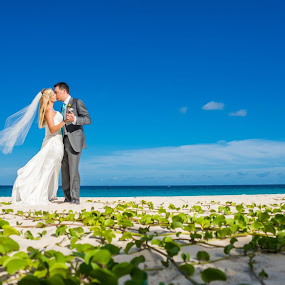 Bermuda by Robert Evans - Wedding Bride & Groom ( bermuda )
