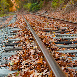 Fall Tracks by Christina Smith - Transportation Railway Tracks ( railroad tracks, twisted images photography )