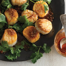 Scallops with Spice Oil