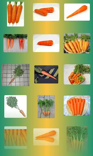 玩攝影App|野菜サーチ免費|APP試玩