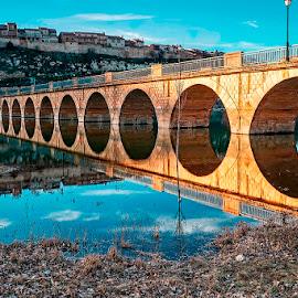 Reflejos by Lourdes Ortega Poza - Buildings & Architecture Bridges & Suspended Structures ( rio, puente, españa., pantano de linares, pantano, segovia, maderuelo, reflejos )