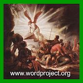 Free Portuguese Audio Bible APK for Windows 8