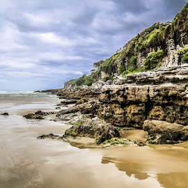 Stormy beach head by Michael Wignall - Landscapes Beaches ( hdr, ocean, beach, storm, reflect )