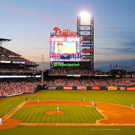 Phillies by Kristen Sauer - Sports & Fitness Baseball