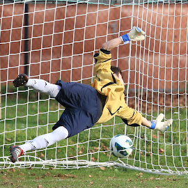 goalkeeper by Charles KAVYS - Sports & Fitness Soccer/Association football ( ball, football, goalkeeper, goool, sk treboradice )