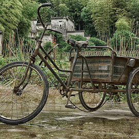 Work Horse, Hongcun by Michael Holser - Transportation Bicycles ( work horse bicycle, hongcun,  )