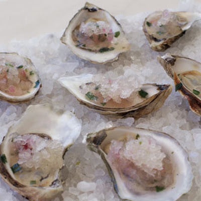 Oysters on the Half-Shell with Grapefruit Granita