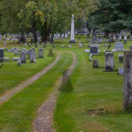 Graveyard  Ghosts by Michael Wolfe - Digital Art Things ( graves, ghosts, cemetery, trees, gravestone, graveyard,  )