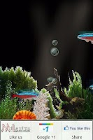 Screenshot of Bubbling Neon India Fish HD