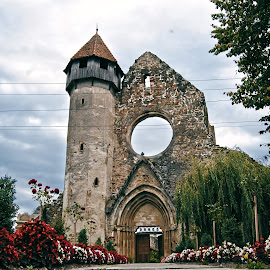 Biserica cisterciana de la Carta by Adelina Mihaela Tudorache - Buildings & Architecture Other Exteriors ( biserica manastire monastery church cistercian monks romanic gothic style )