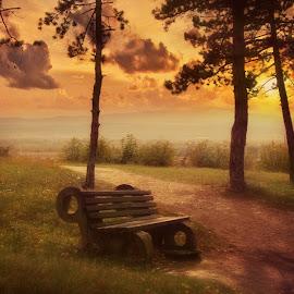 by Misa Kostadinovic - Landscapes Sunsets & Sunrises