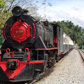 Borneo steam train. by David Neagle - Transportation Trains ( front view, stationary, red and black, steam train )