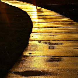 Yellow Brick Road by Terri Venesio - City,  Street & Park  Street Scenes ( sacramento, terri m. venesio, sacramento photographers, northern california, california, northern california photography, sacramento photography, sacramento california, venesio, venesio photography )