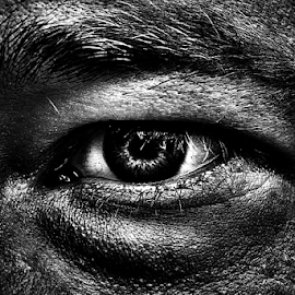 An eye 2  by Roman Kolodziej - People Body Parts ( macro, black and white, anger, fear, close, eye )