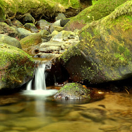 The Gap by Joe Ormonde - Nature Up Close Rock & Stone ( water, stream, nature, moss, stone, close up, rocks, river )