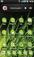 Screenshot of ECOLOGY Green ADW Theme