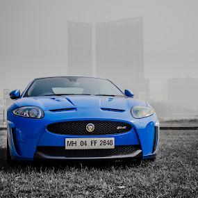 Blue Beast by Mangesh Jadhav - Transportation Automobiles ( jaguar, beast, color, blue, pop, selective color, pwc )