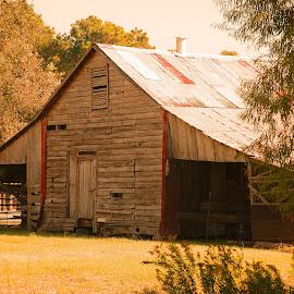 Louisiana Cajun Barn by Ron Olivier - Buildings & Architecture Other Exteriors ( cajun, barn, louisiana cajun barn )