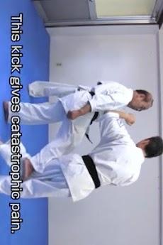 KYOKUSHIN KARATE TO WIN 01のおすすめ画像1