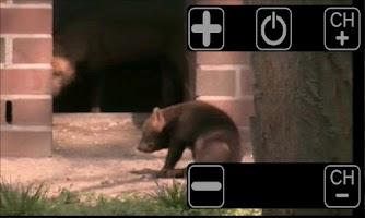 Screenshot of ThereTV (free version)