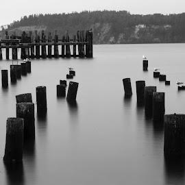 Titlow by Daniel Lazar - Landscapes Beaches